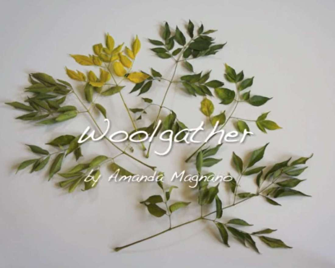 Video-Woolgather